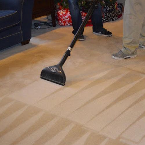 Carpet Sanitisation