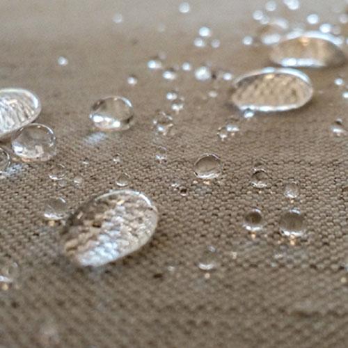 Carpet Scotchgard Protection